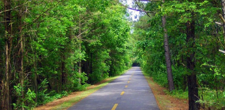 Discover the Silver Comet Trail with Inman Park Properties